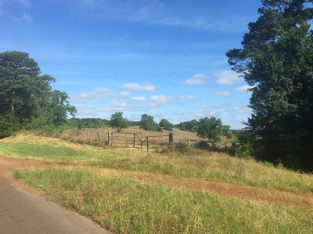 238 Cr 4430, Pittsburg, TX 75686 (MLS #14588830) :: Real Estate By Design