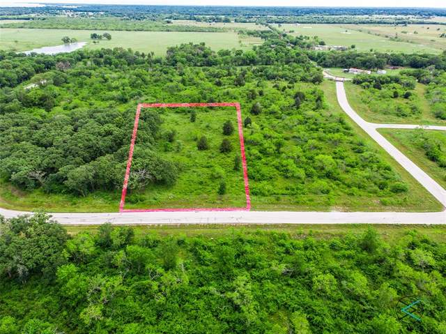 8124 Southern Shore Court, Kemp, TX 75143 (MLS #14588894) :: Real Estate By Design