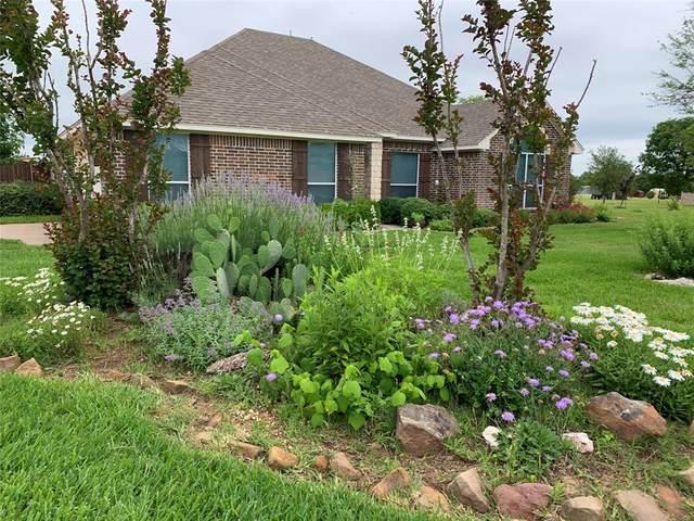 126 Colonial Creek Lane, Weatherford, TX 76088 (MLS #14589371) :: Real Estate By Design