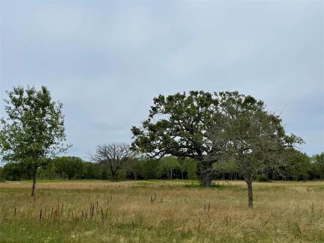Lot 16 Private Road 7204, Wills Point, TX 75169 (MLS #14589852) :: The Daniel Team
