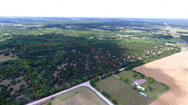 TBD County Rd 1079 20Ac, Celeste, TX 75401 (MLS #14589989) :: Real Estate By Design