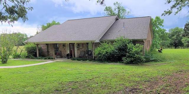 12065 Squirrel Road, Pittsburg, TX 75686 (MLS #14591343) :: Real Estate By Design