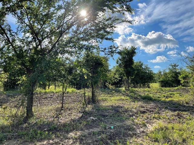 139 Greyhound Lane, Poolville, TX 76487 (MLS #14591673) :: Robbins Real Estate Group