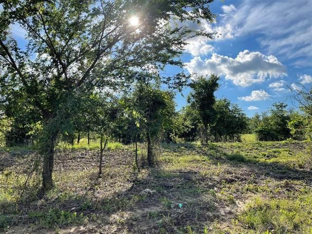 133 Greyhound Lane, Poolville, TX 76487 (MLS #14591675) :: Feller Realty