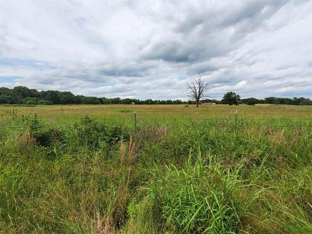 Tract 2 Vz County Road 4305, Ben Wheeler, TX 75754 (MLS #14592336) :: Real Estate By Design