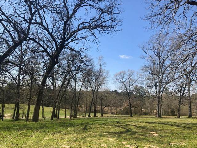 18220 Hwy 271, Winona, TX 75792 (MLS #14592401) :: The Russell-Rose Team