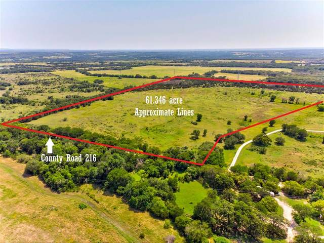 TBD County Road 216, Iredell, TX 76649 (MLS #14592613) :: Real Estate By Design