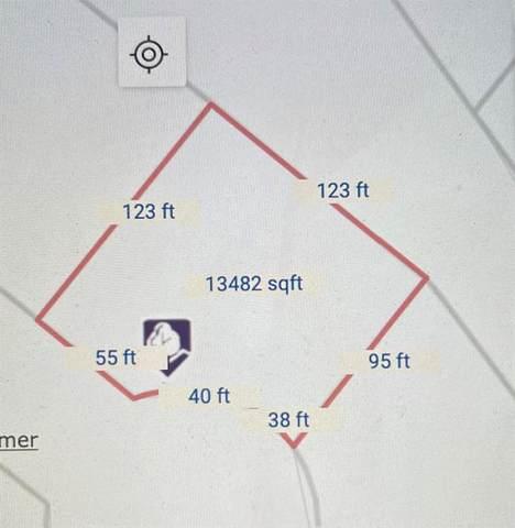 LOT 42 S Oaks, Lone Oak, TX 75453 (MLS #14592735) :: Real Estate By Design