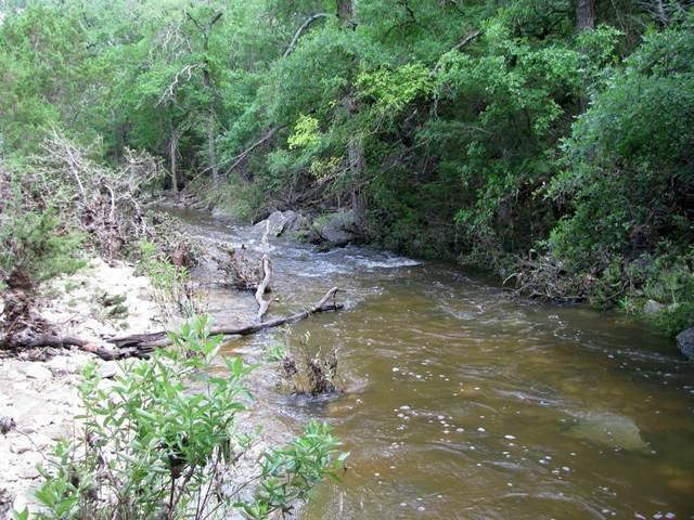 TBD County Road 405, Hamilton, TX 76531 (MLS #14593110) :: The Hornburg Real Estate Group