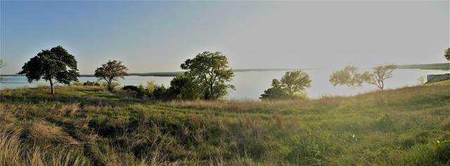 10059 Bluffview Court, Whitney, TX 76692 (MLS #14593334) :: Real Estate By Design