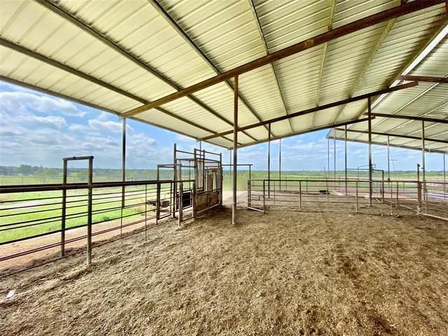 1088 County Road 2341, Sulphur Springs, TX 75482 (MLS #14593788) :: Real Estate By Design