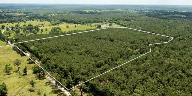 00 Rf King Road, Groveton, TX 75845 (MLS #14593986) :: Real Estate By Design