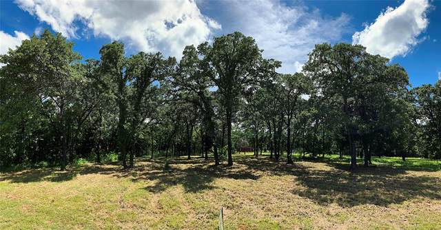 21ac County Rd 2252, Valley View, TX 76272 (MLS #14594682) :: VIVO Realty