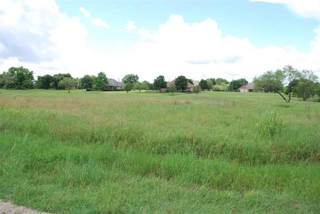 27189 Whispering Meadow Drive, Whitney, TX 76692 (MLS #14595021) :: VIVO Realty
