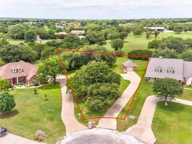4616 Stoney Creek Court, Granbury, TX 76049 (MLS #14595132) :: Team Hodnett