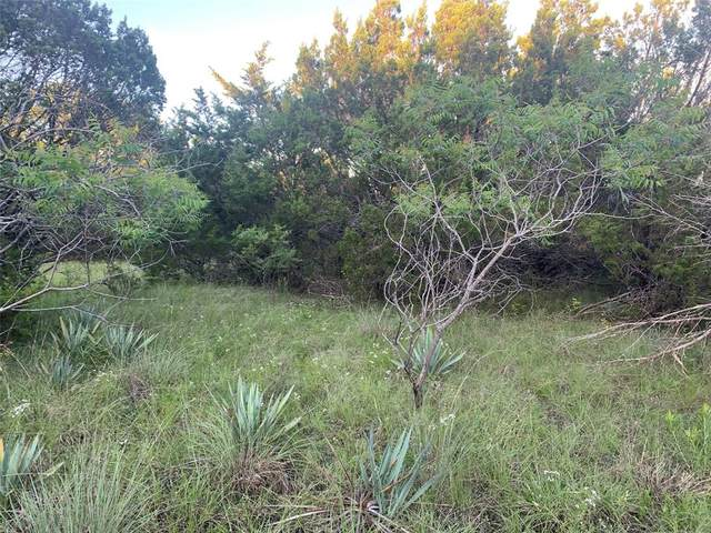1175 Sunfish Point, Bluff Dale, TX 76433 (MLS #14595318) :: VIVO Realty