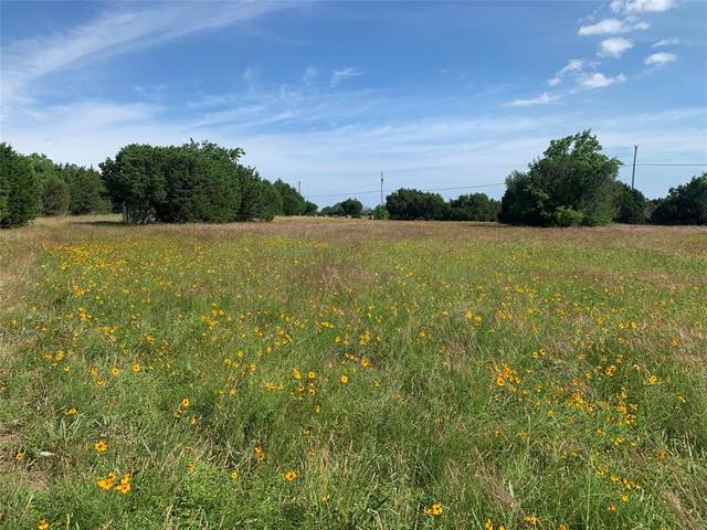 Tbd Overlook Drive, Cleburne, TX 76033 (MLS #14595391) :: Potts Realty Group
