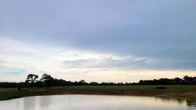 T5 Rs County Road 4410, Point, TX 75472 (MLS #14595447) :: Real Estate By Design