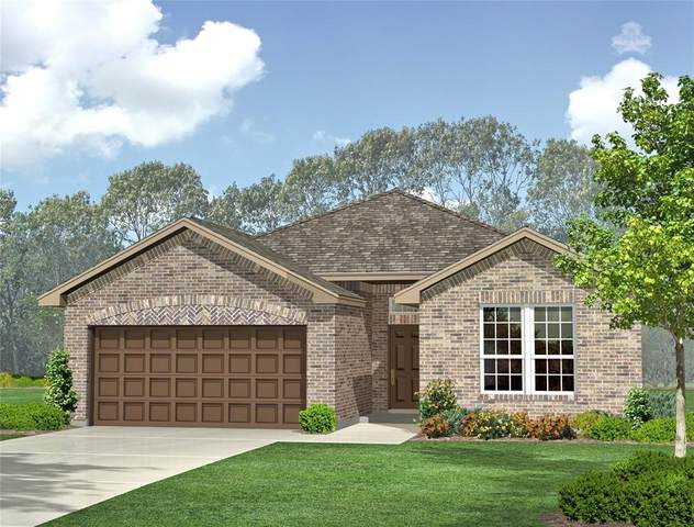 1244 Kerrville Lane, Weatherford, TX 76087 (MLS #14595489) :: All Cities USA Realty