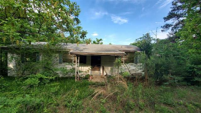 680 County Rd 2596, Naples, TX 75568 (MLS #14595536) :: Real Estate By Design