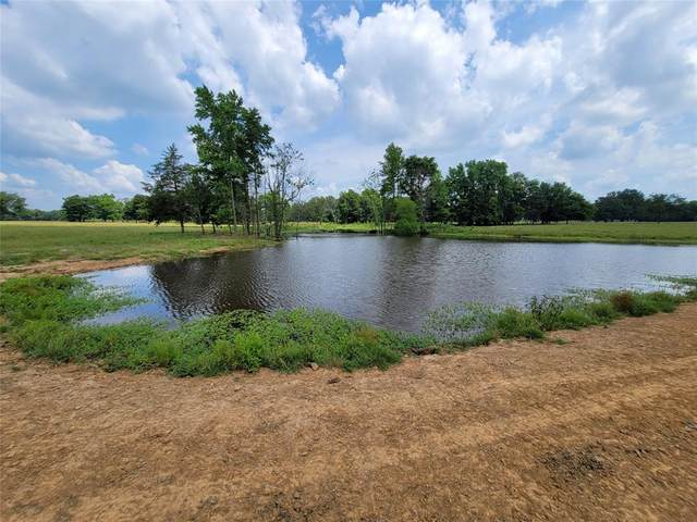 00 Cr 3104, Pittsburg, TX 75686 (MLS #14595674) :: Real Estate By Design