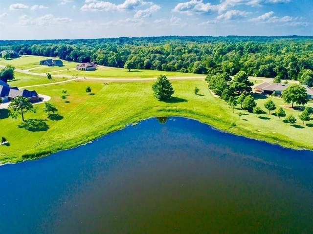 16651 Stallion Shores Court, Lindale, TX 75771 (MLS #14596442) :: Real Estate By Design