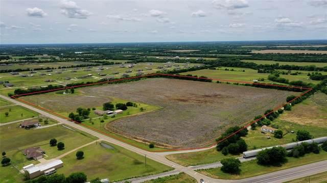 368 Fm 981, Trenton, TX 75490 (MLS #14597338) :: The Hornburg Real Estate Group