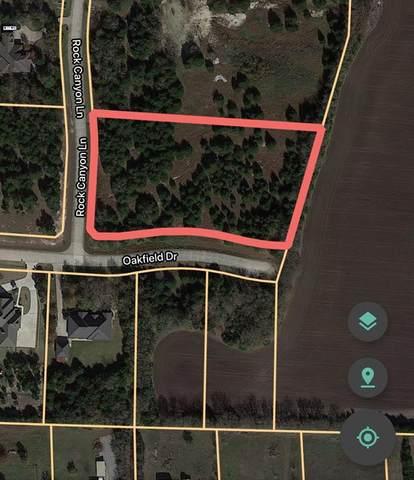 2208 Rock Canyon Lane, Mckinney, TX 75071 (MLS #14597831) :: EXIT Realty Elite
