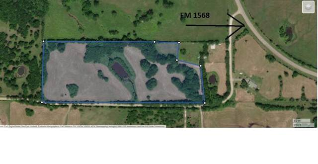 TBD2 County Road 4115, Campbell, TX 75422 (MLS #14597876) :: Real Estate By Design