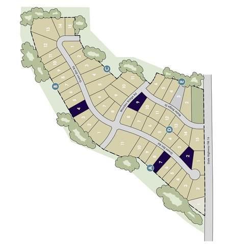 Lot 3 Green Elm Road, Graford, TX 76449 (MLS #14598254) :: Team Hodnett