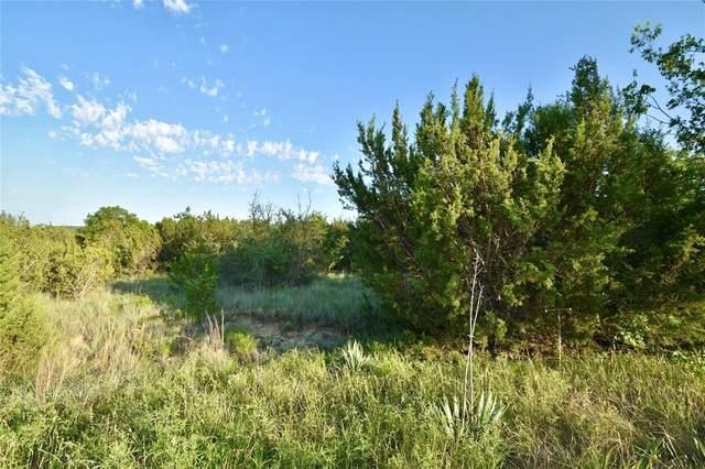 1400 Peninsula Drive, Bluff Dale, TX 76433 (MLS #14599463) :: VIVO Realty