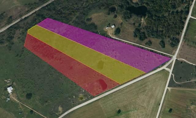 TBD B County Road 337, Dublin, TX 76446 (MLS #14599639) :: The Hornburg Real Estate Group