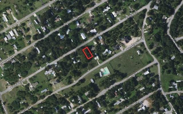 3005 Blackjack Lane, Granbury, TX 76048 (MLS #14600559) :: The Juli Black Team