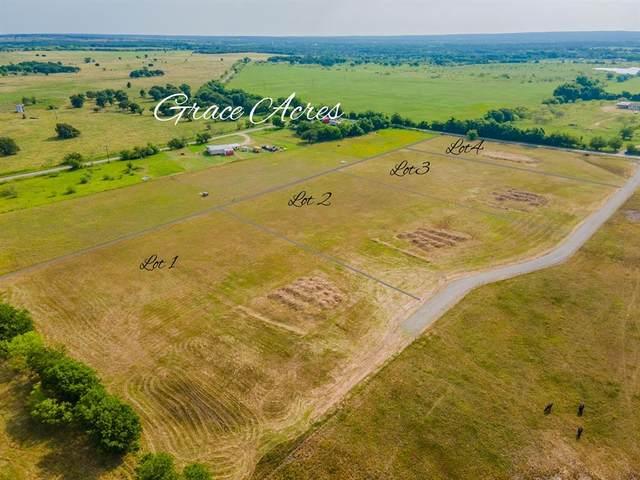 1000 Grace Acres Drive, Perrin, TX 76486 (MLS #14601464) :: The Mauelshagen Group