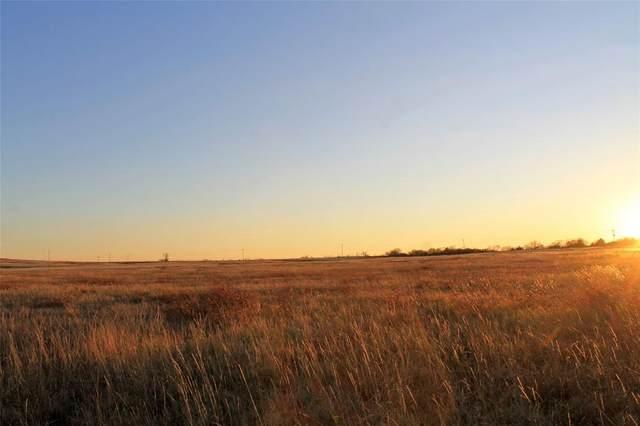 21 ac Wilemon Road, Maypearl, TX 76064 (MLS #14601555) :: Robbins Real Estate Group
