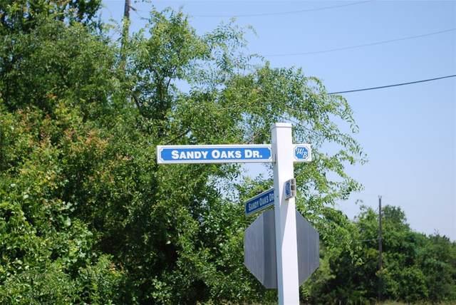 14007 Sandy Oaks Drive, Whitney, TX 76692 (MLS #14601563) :: EXIT Realty Elite