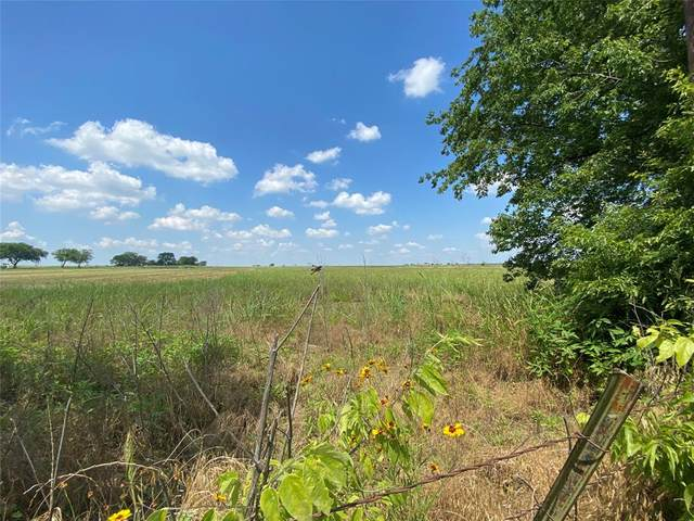 TBD County Road 227, Hico, TX 76457 (MLS #14601606) :: Real Estate By Design