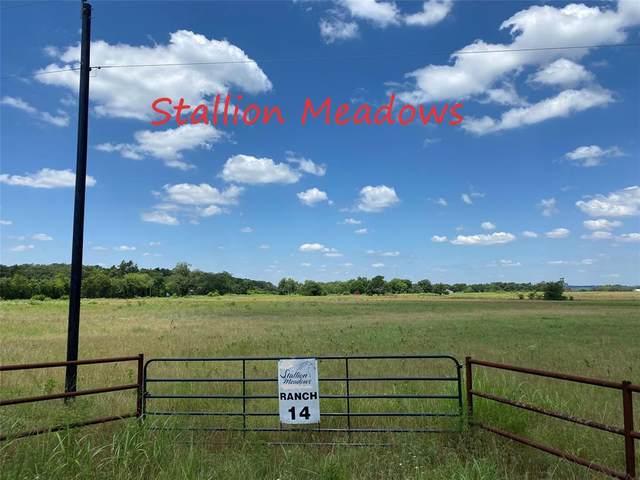 14 County Rd 115, Callisburg, TX 76240 (MLS #14601738) :: Robbins Real Estate Group