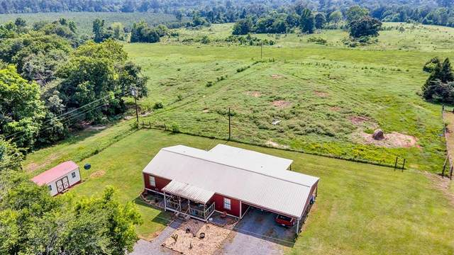 329 County Road 3208, Jacksonville, TX 75766 (MLS #14602207) :: The Chad Smith Team