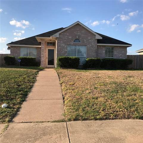 1341 Meadow Creek Drive, Lancaster, TX 75146 (MLS #14602413) :: Robbins Real Estate Group