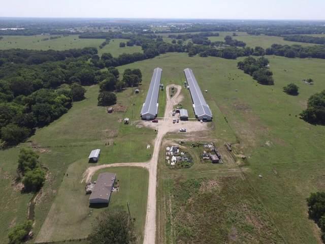 467 Farm Road 2297 Es, Sulphur Springs, TX 75482 (MLS #14602682) :: Team Tiller