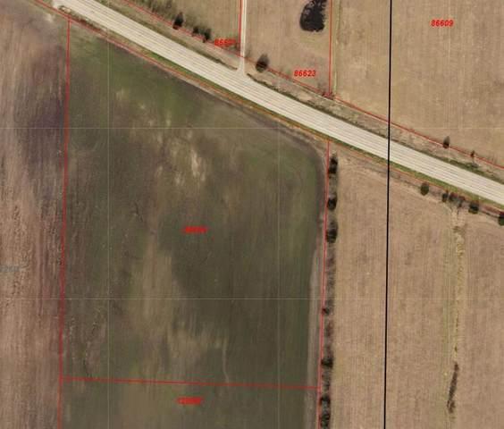 11 ac Tbd Hwy 11 Highway, Bailey, TX 75413 (MLS #14603343) :: Lisa Birdsong Group   Compass