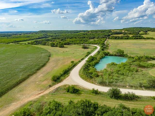 3600 County Road 495, May, TX 76471 (MLS #14603535) :: Real Estate By Design