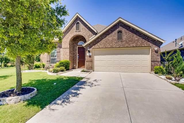 3905 Muscadine Drive, Mckinney, TX 75071 (MLS #14603776) :: Robbins Real Estate Group