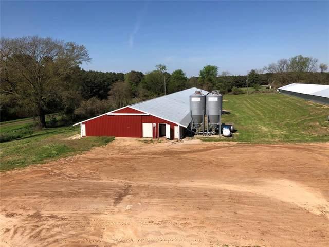Linden, TX 75663 :: Real Estate By Design