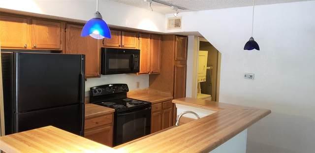2304 Balsam Drive E208, Arlington, TX 76006 (MLS #14605456) :: Front Real Estate Co.