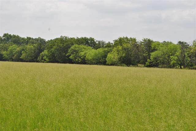 TBD County Road 240, Gustine, TX 76455 (MLS #14606397) :: Real Estate By Design
