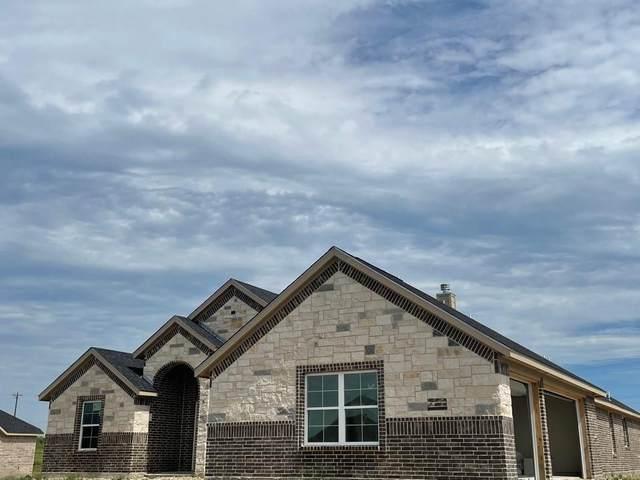 13508 Prairie Vista Lane, Ponder, TX 76259 (MLS #14606479) :: Russell Realty Group