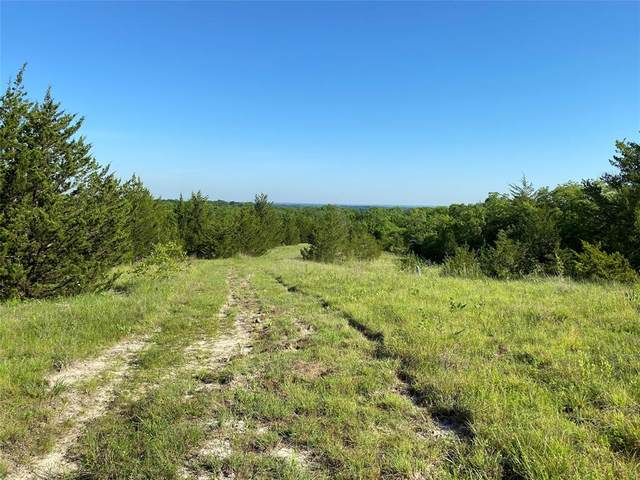 TBD 042 E State Hwy 56, Bells, TX 75414 (MLS #14606929) :: The Chad Smith Team