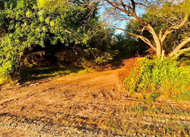 LOT 4 County Road 318, Terrell, TX 75160 (MLS #14607512) :: RE/MAX Pinnacle Group REALTORS